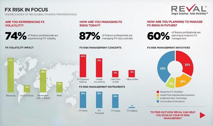 FX Risk In Focus Infographic