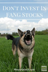 What are FANG stocks?