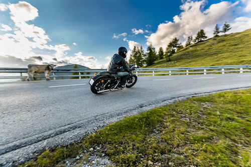 How to Get Affordable Motorcycle Insurance